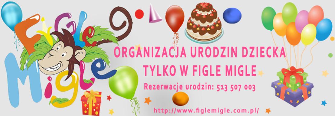 Oferujemy organizację urodzin Twojego dziecka.